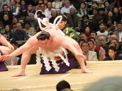 ☆大阪三月場所 相撲 枡席にて☆