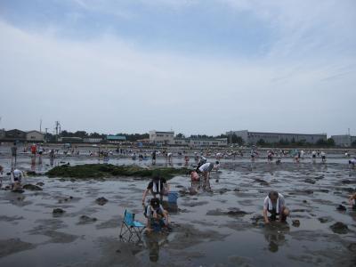 夏の富津海岸潮干狩り☆はかりめ丼☆2010/07/11