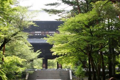 夫婦DE修学旅行 梅雨の京都(哲学の道サイクリング)
