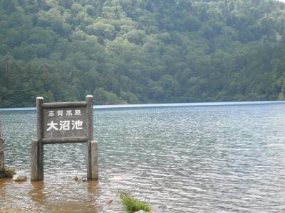 志賀高原・[池めぐりコース]をハイキング(22・7)