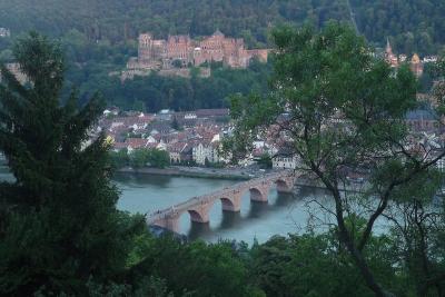 個人手配・2010年夏夫婦で行くドイツ・スイス旅行18(ハイデルベルク編)