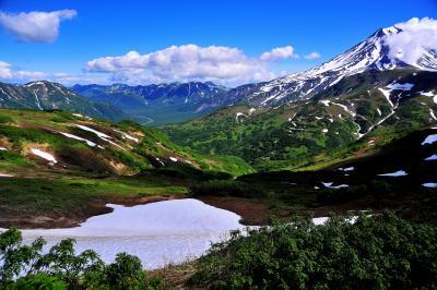 カムチャッカ雲上の花々と残雪の山2 (3日目ビリュチンスキー山ベース地到着まで)