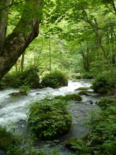 水と緑のみちのく旅・その3「十和田湖と奥入瀬(おいらせ)渓流(前編)