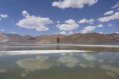 ふたたびインド:ラダック★パンゴン湖