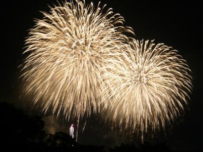 2010年夏! 長岡まつり大花火大会のニューフェニックスは凄い迫力でした!