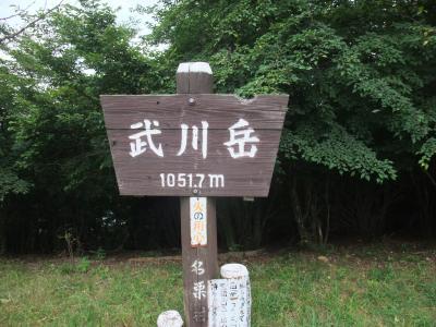 武川岳から二子山へ