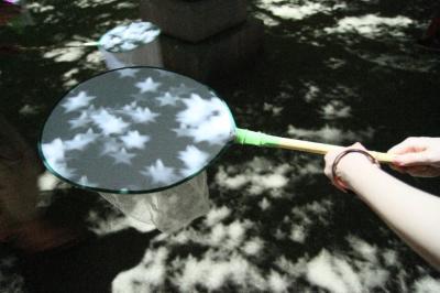 女木島「木もれ陽プロジェクト」&花火(瀬戸内国際芸術祭2010)