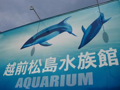 越前松島水族館とエンゼルランド