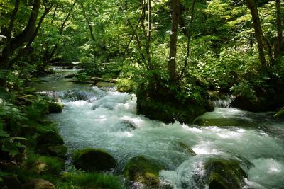 ひとりドライブ  ◇緑いっぱいの奥入瀬渓流とおまけのスヌーピーの滝編◇