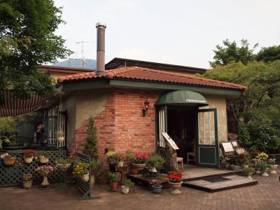 仙石原の箱根湿生花園入口にあるグレインで、ゆったりと落ち着いて、美味しい夕食をいただきました 2010年7月