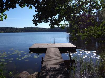 森と湖の国 FINLAND ひとり旅 part5 <アウランコ 森>