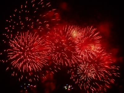 真夏の夜空に大輪の花を とりで利根川大花火 2010