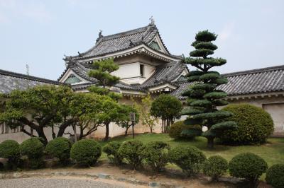 和歌山城を見て和歌山ラーメンを食べたにゃん