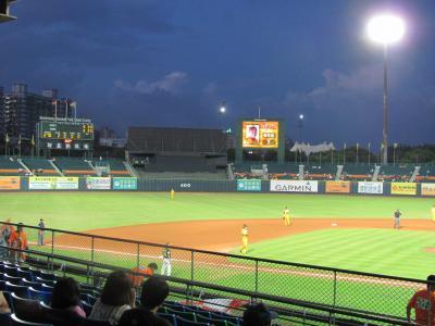 短期決戦・台湾親子どんぶり④台湾棒球の正しい楽しみ方とは