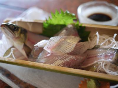 【香嵐渓】鮎と鰻を食べに、夏の足助へ