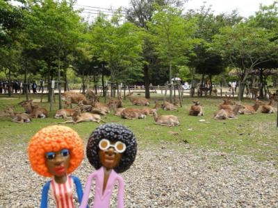 みすたぁの奈良で沢山の仏像に会いに行こう♪の旅 2日目 東大寺・正倉院&戒壇堂