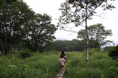 榛名山 ゆうすげの道 花咲く季節にハイキングしたい