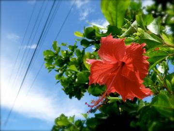 3回目の沖縄。ー晴れたらえぇねー