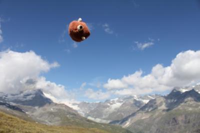 ★ツェルマット★ ハリー、2010年はスイスだ! Vol.11