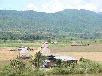 チェンマイ徒然草 其の百七十四 北タイ、タートンの周辺。