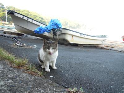 あこがれの猫島 田代島へ行ってきました! その1