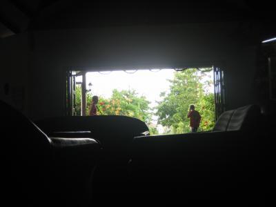 ボルネオ島&コタキナバル、ダイビングとジャングルのマジカル・ミステリーツアー その二