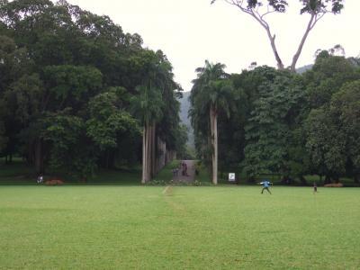 のんびりお散歩・植物園 / スリランカ 2