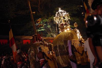 世界で一番盛り上がるのは何祭り!?INスリランカ ~ペラヘラ祭り~ / スリランカ 3