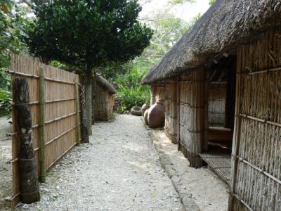 冬の沖縄本島へ(9)
