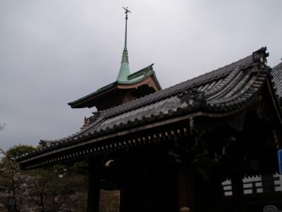 京都大雲院-2007年桜の頃
