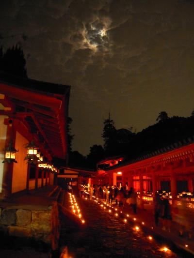 奈良の旅 1&2日目(春日大社の夜と朝)
