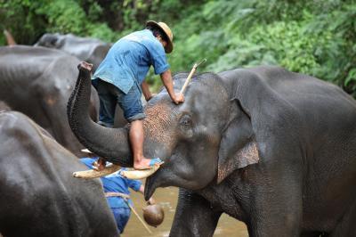 2010 タイ、ラオス、ミャンマーの旅9日目