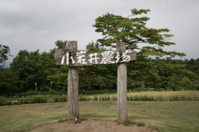 東北の旅 四日間 岩手県