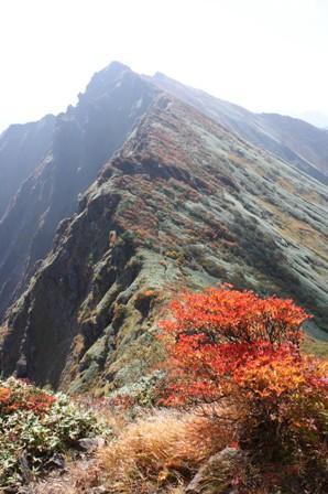 '08 蓬峠経由 紅葉の谷川岳1泊2日 2日目