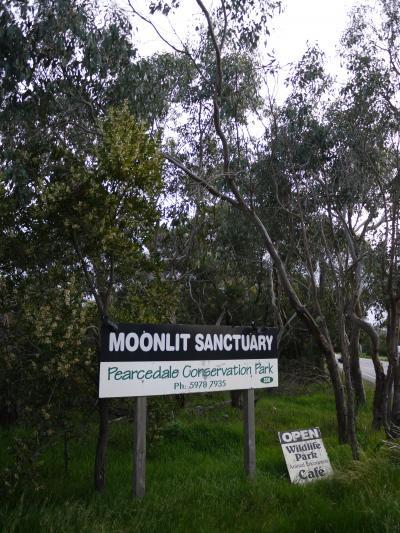 夜のナイトツアーが楽しい、ムーンリット・サンクチュアリー(Moonlit Sanctuary)