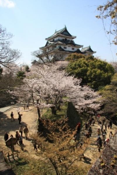 和歌山城  かつては姫路城に次いで国宝に指定された程の名城!