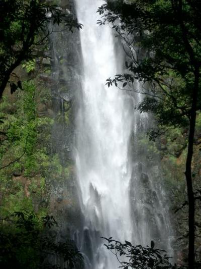 千里ヶ滝の轟音を聞き、暑さと疲れを忘れる