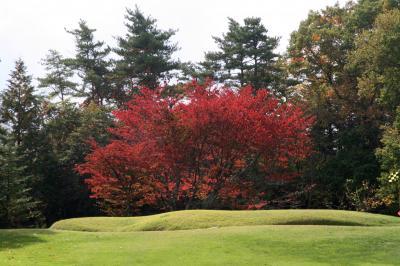プリンスランドゴルフクラブ 紅葉チョット 10月/2010