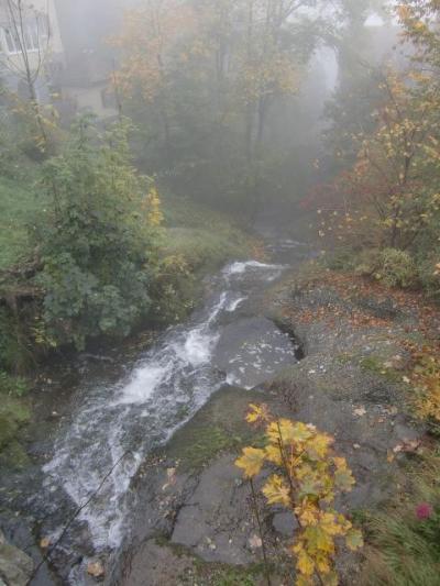 ウィーン~ザンクトガレン~チューリッヒ 初めての10月のヨーロッパ④