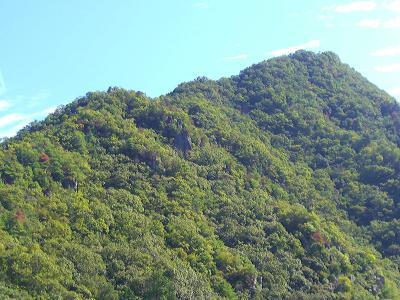 晴れの国 岡山(岡山県の山:和気町/佐伯天神山城跡を森林浴 △409M)