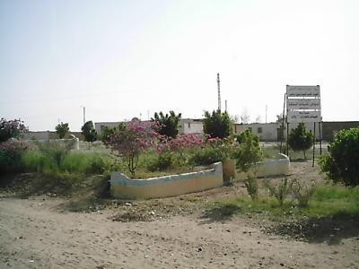2010 エジプト 6日目