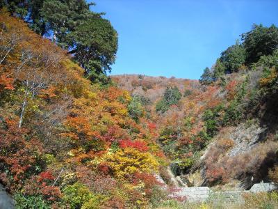 仕事帰りにひとっ飛び!高山桜庵&白山スーパー林道