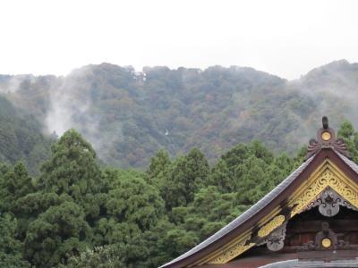 初めて弥彦神社を訪問する