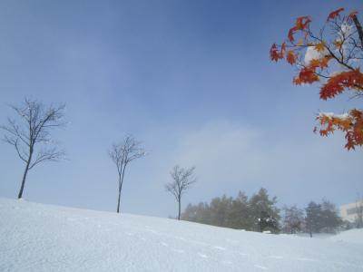 緊急速報~秋と冬のコラボ・北海道初雪だより♪♪