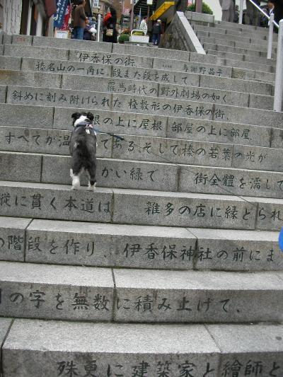 2010秋 温泉旅行 w/犬! その1 伊香保温泉