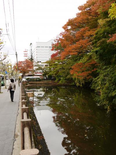ぶらり紅葉2010 ~ 千秋公園 ~