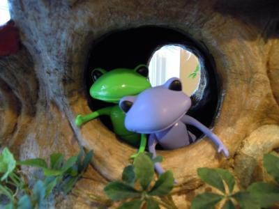 Wonder Frogとリラックマストアー