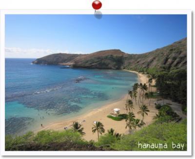 ハワイ ?
