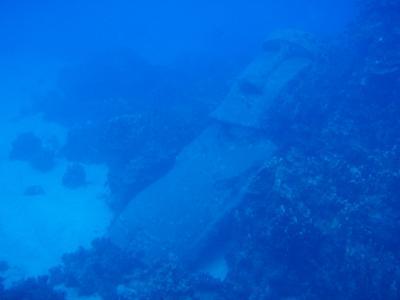 水中モアイとダイビング Chile 5th day @Easter Island
