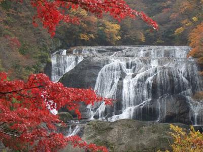 2010.11.14 茨城~袋田の滝~紅葉~